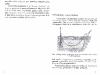 vynuogiu-auginimas-_page_04