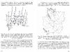 vynuogiu-auginimas-_page_19